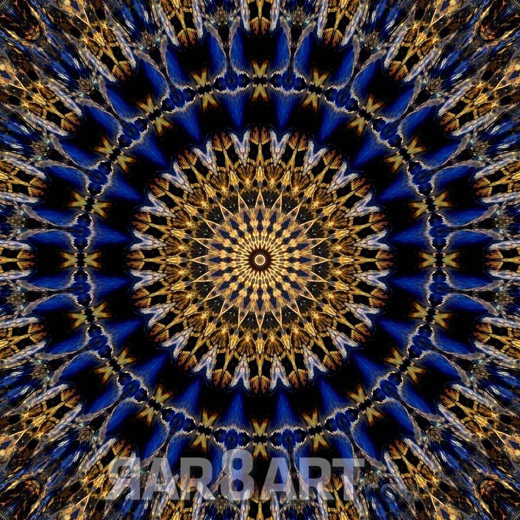 RAR8ART Mandala WH 8