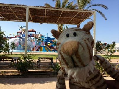 Today i visit a really cool aqua park. And i missed Marvin so much....