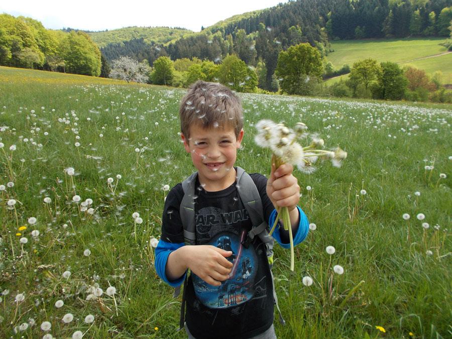 Kinder lieben Blumenwiesen