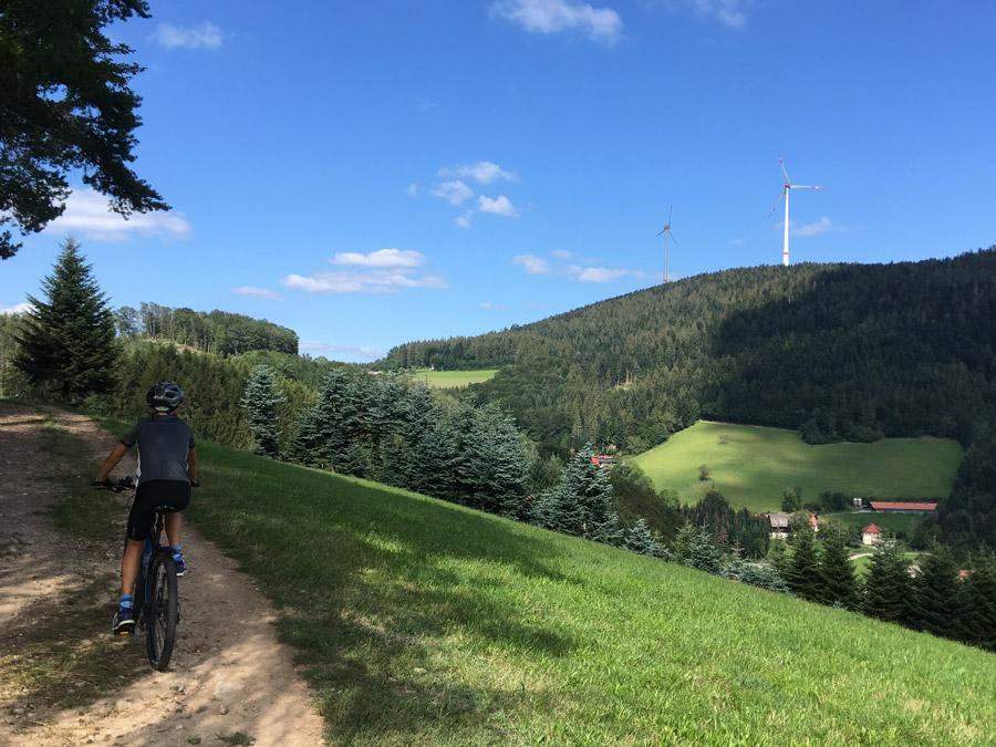 Mountainbiken auf vielen ausgeschilderten Wegen