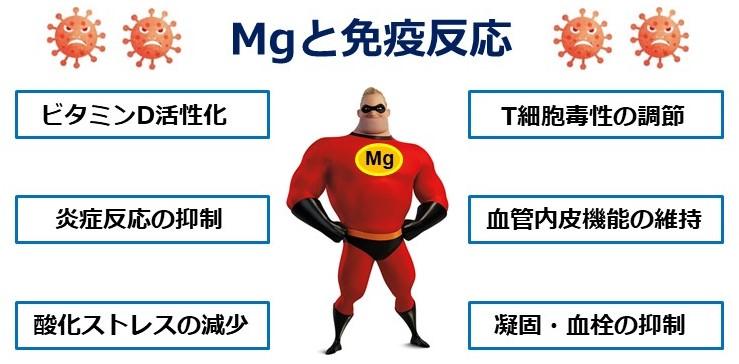マグネシウム(Mg)と免疫