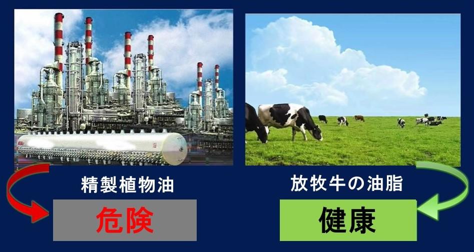 植物油は危険ですよ!(2)