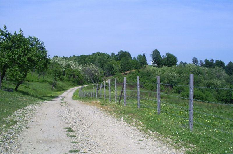 Cesta prema kapeli