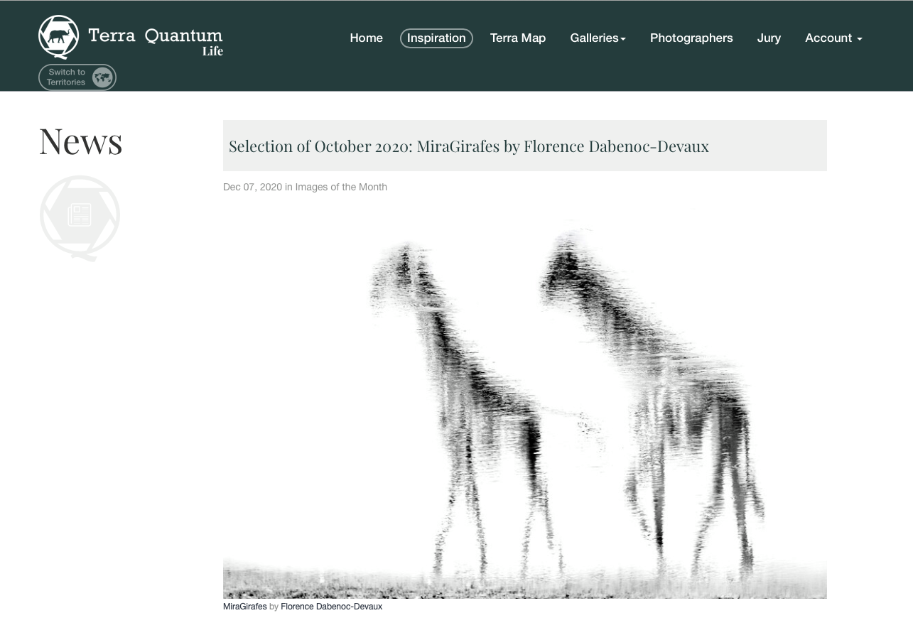 "OCTOBRE 2020 : ""MiraGirafes"" - PHOTO du MOIS - TERRA QUANTUM"