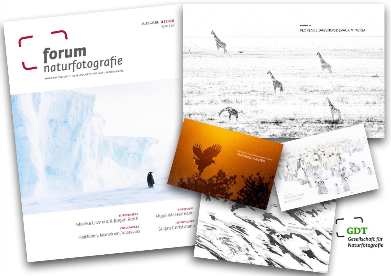 """DÉCEMBRE 2020 - Publication - MAGAZINE allemand GDT - Forum Naturfotografie - """"Twiga"""""""
