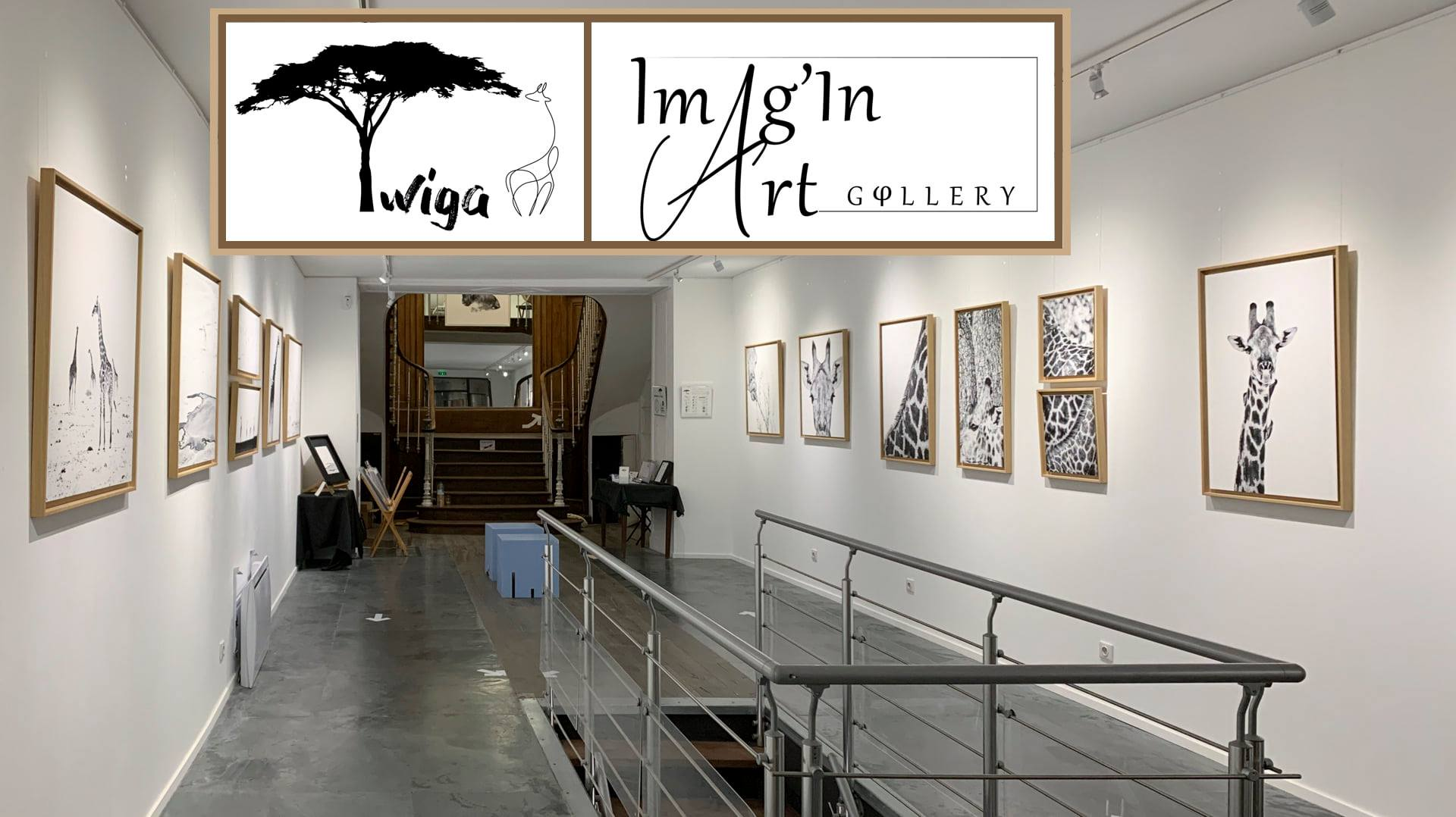 OCTOBRE 2020 - GALERIE IMAGIN'ART - Saintes