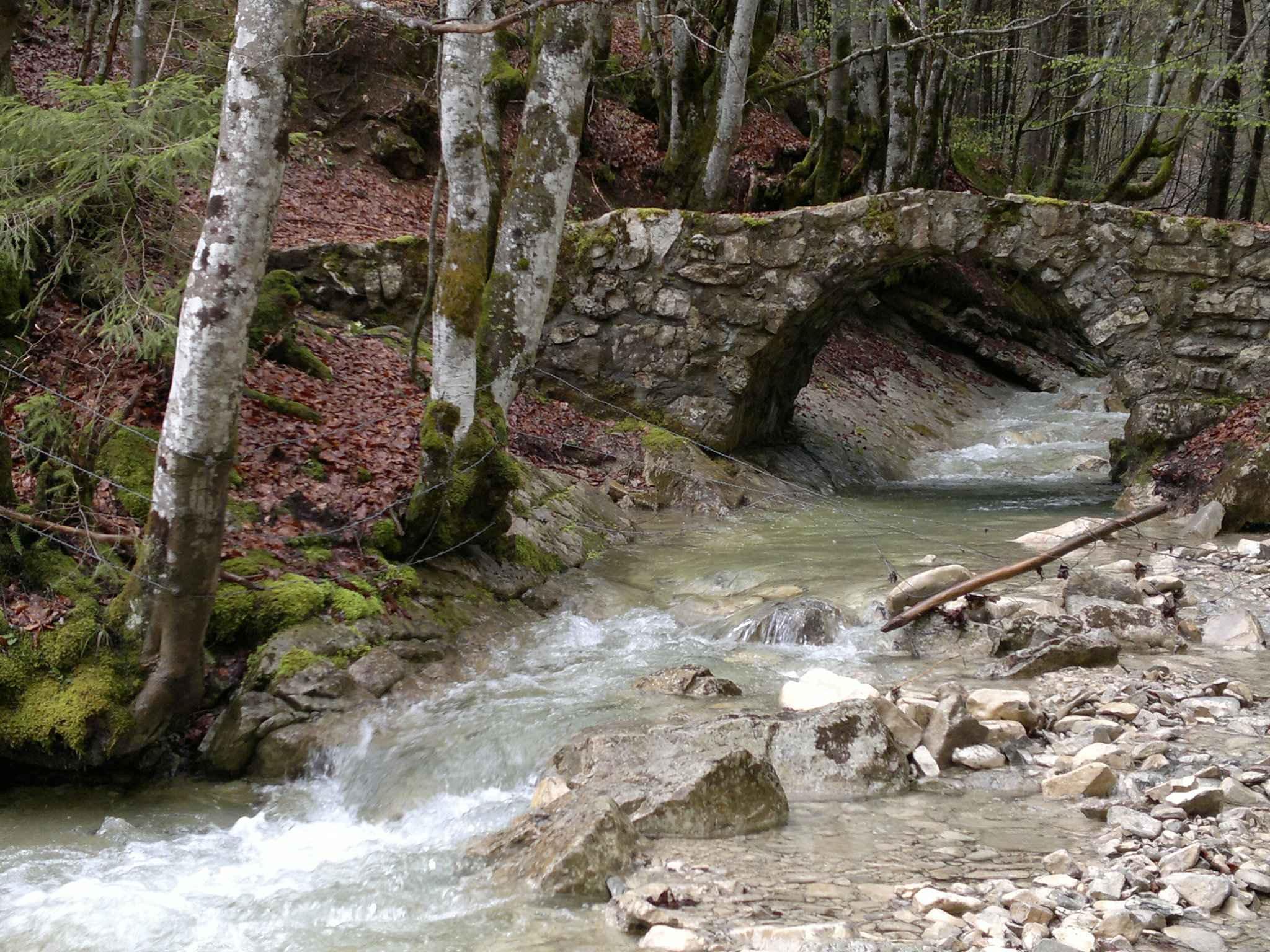 Pont sur le Cozon