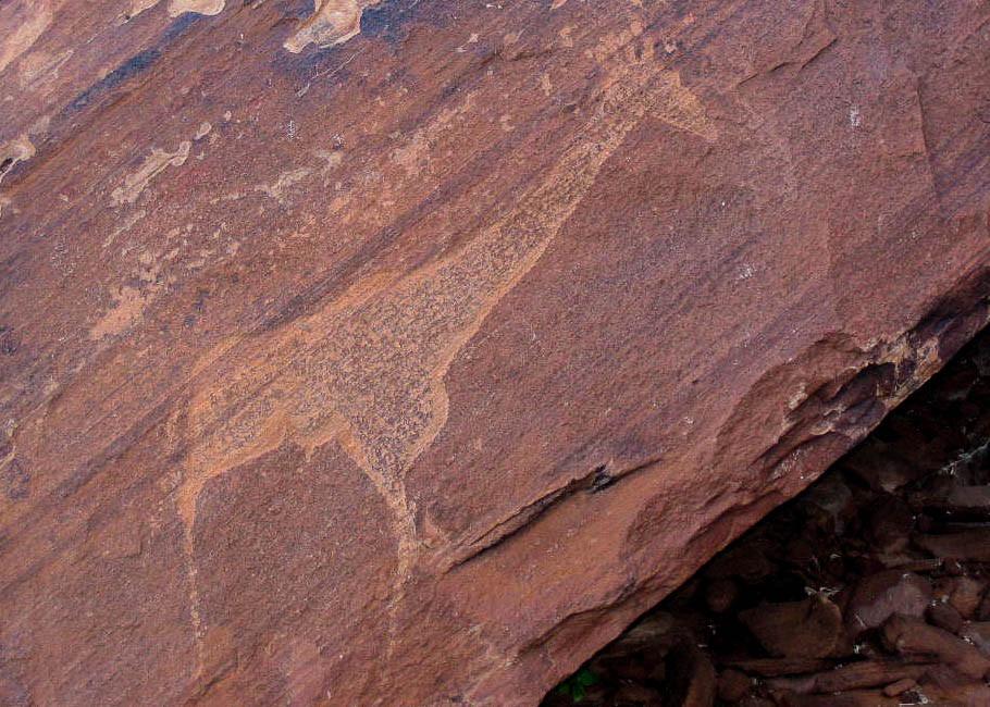 Rätselfrage: Die Gravur im National Monument von Twyfelfontein stellt eindeutig eine..?... dar.