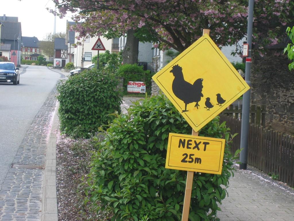 Vorsicht! Hühner mit ihren Kücken kreuzen.
