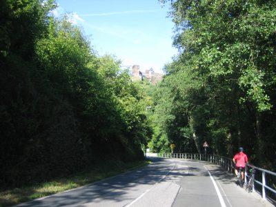 Engehöll/Oberwesel. Blick auf die Schönburg