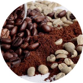 caffe bio equosolidale madreterra