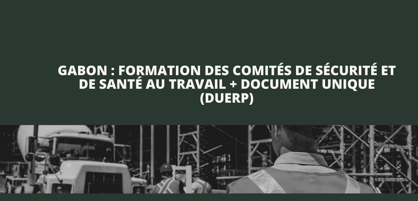 Formation des comités de sécurité et de santé au travail + Document Unique d'Évaluation des Risques Professionnels (DUERP)