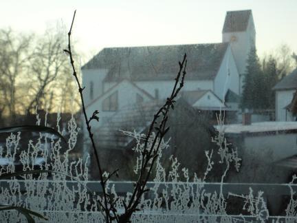 Schillernde Eisblumen zum Frühlingsbeginn