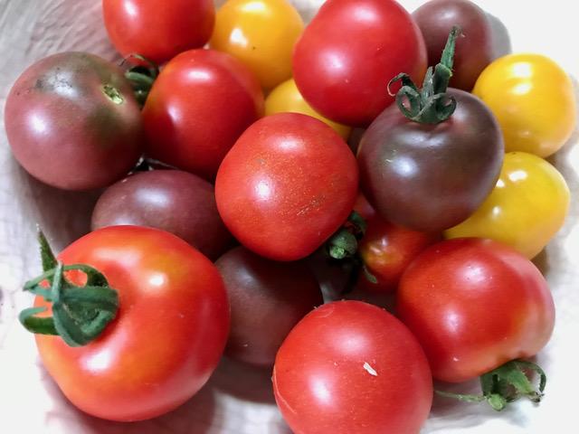 チャックのトマト