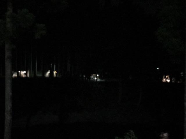キャンプj場の灯火
