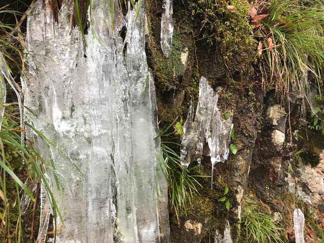 氷柱(ツララ)