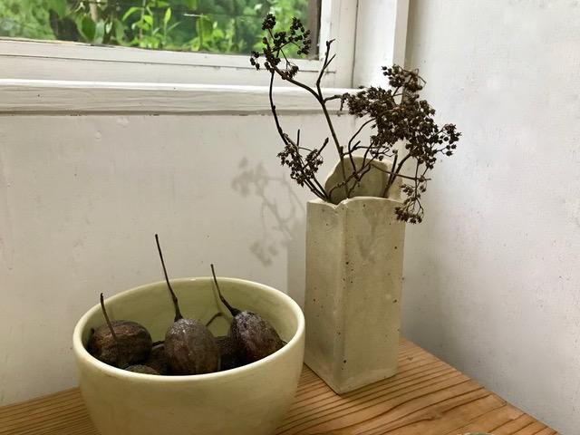 ハンカチの木の実 コアジサイの枝