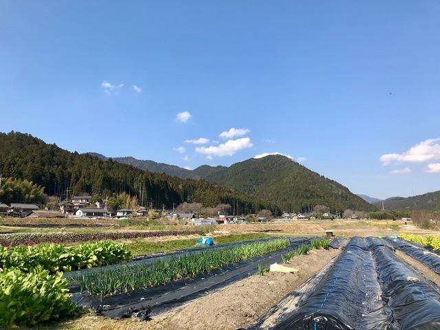 京都 大原 19日