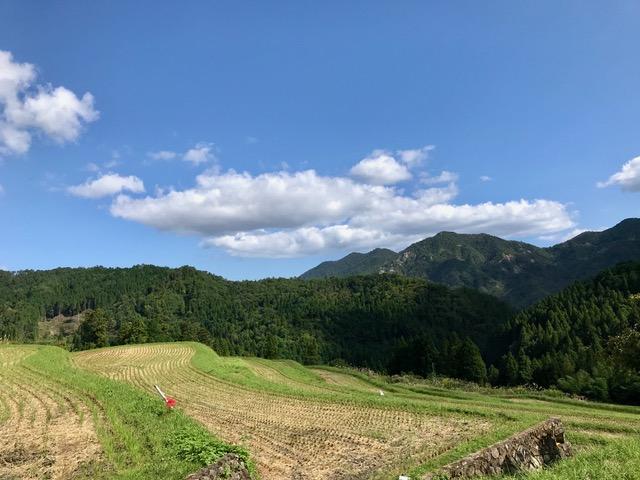 「畑(はた)」の棚田