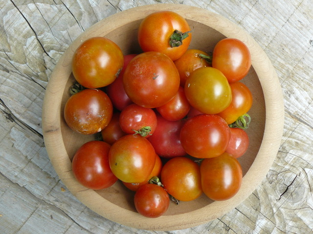 赤くなるまで待つトマト