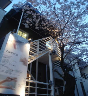 外観 甲陽園駅徒歩1分 桜の木が目印です。