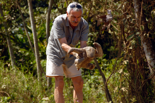 Rettung eines Faultieres Peru 2008