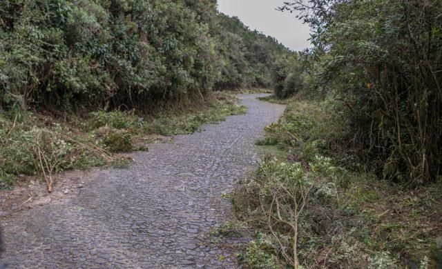 11 km Kopfsteinplaster