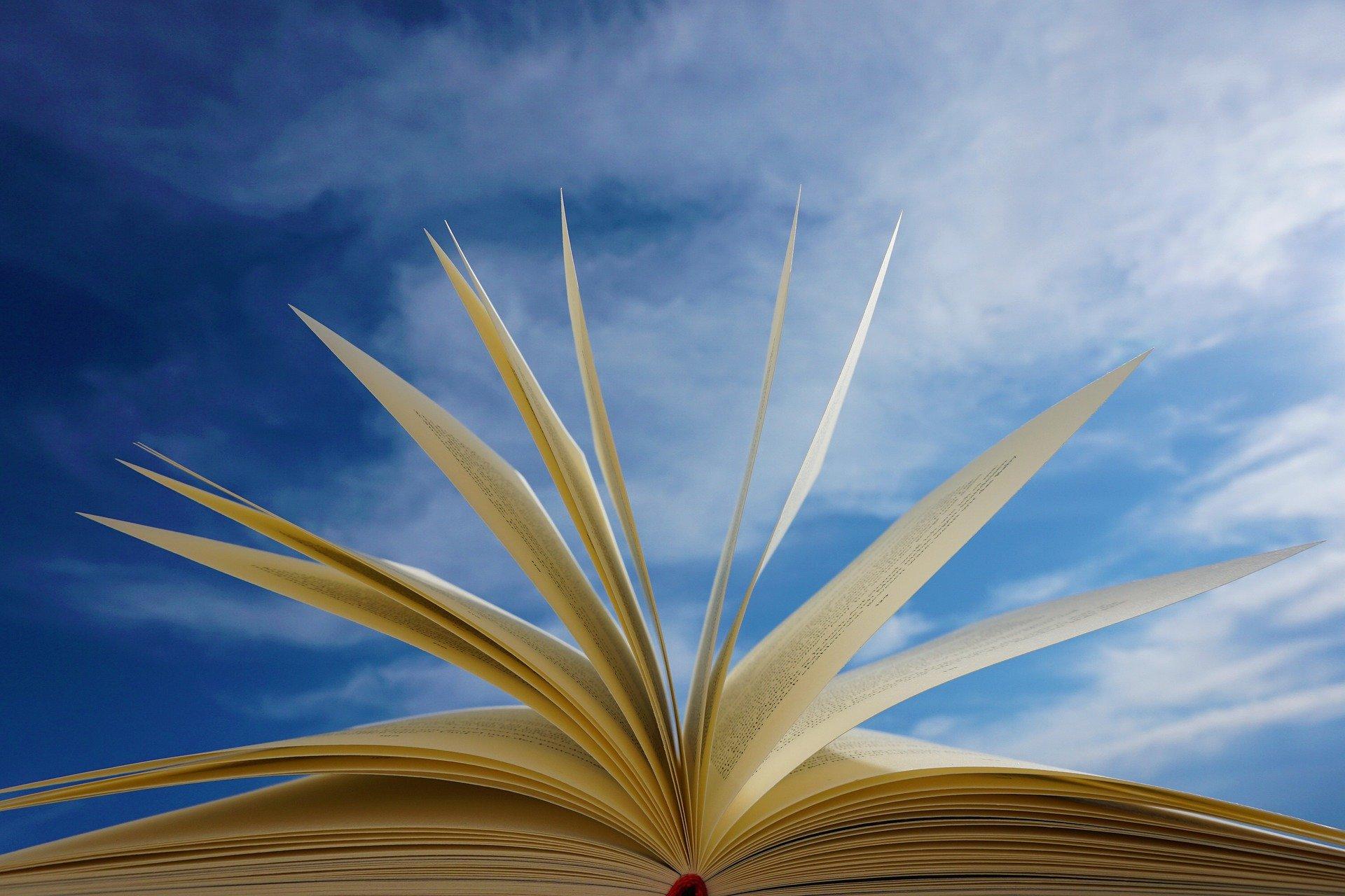 Warum ich Bücher liebe