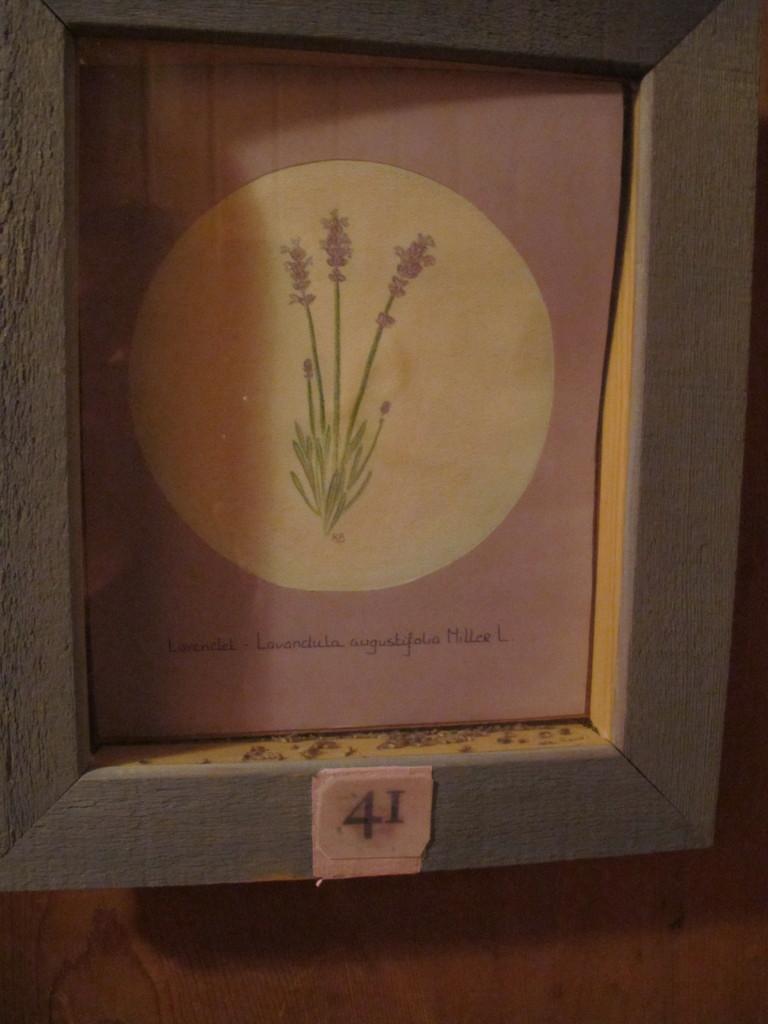 Room Lavendel