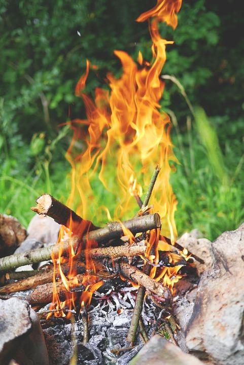 Teamevent Wald, Lagerfeuer, Waldaktiv, Waldbaden, Waldpofen
