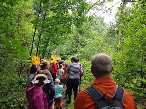 Walderlebnis für Familien