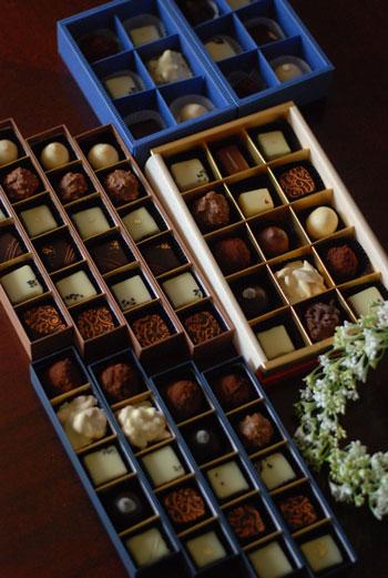 プティショコラ Petit Chocolat