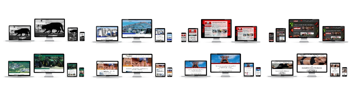Professionell für kleines Geld: Schnell und günstig zu Ihren neuen Internetseiten!