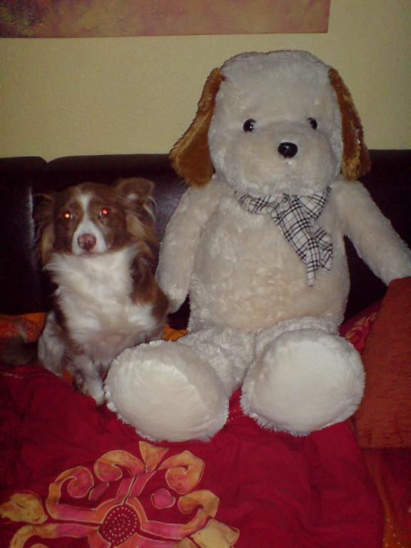Tilli mit ihrem großen Beschützer