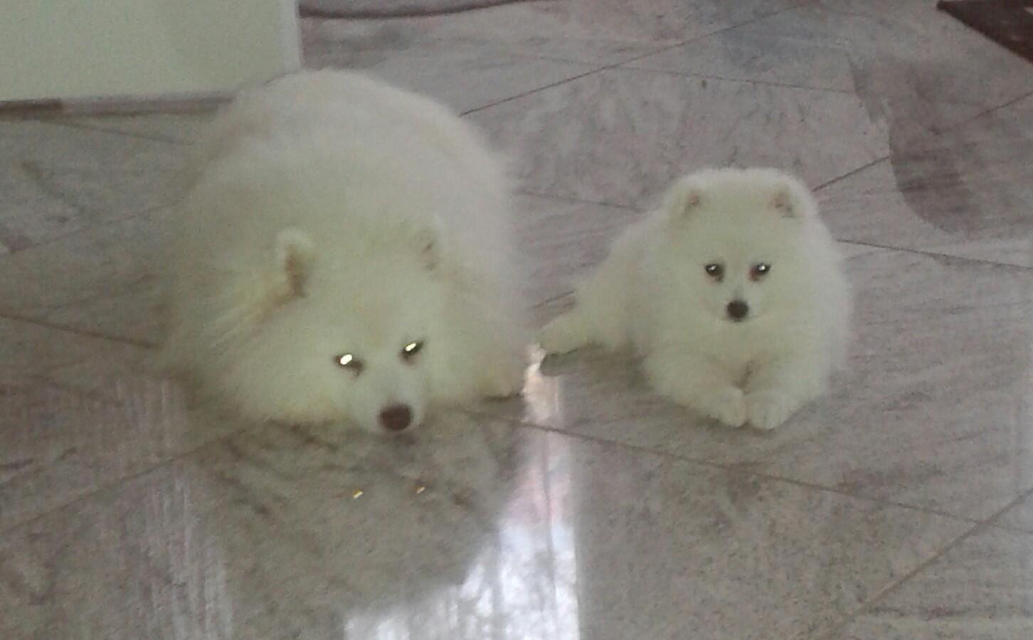 Fibi mit ihrem Bruder großer Bub