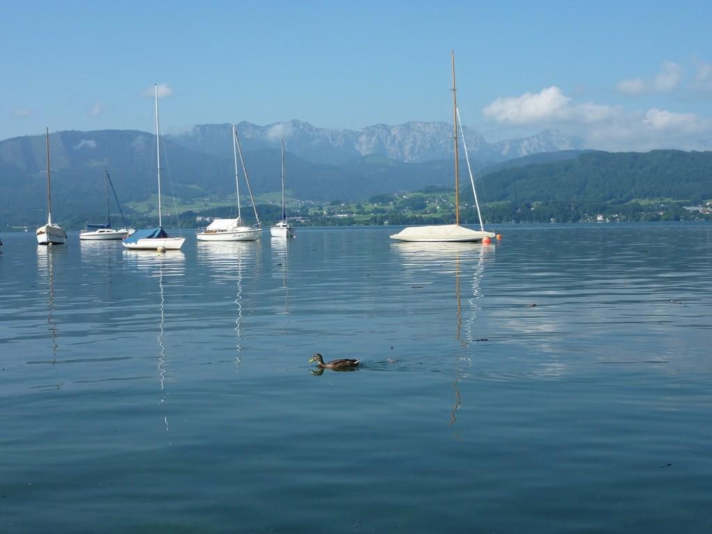 Blick auf den Traunsee mit Segelbooten