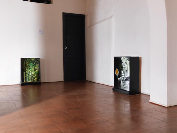 Verónica Riedel (colección)