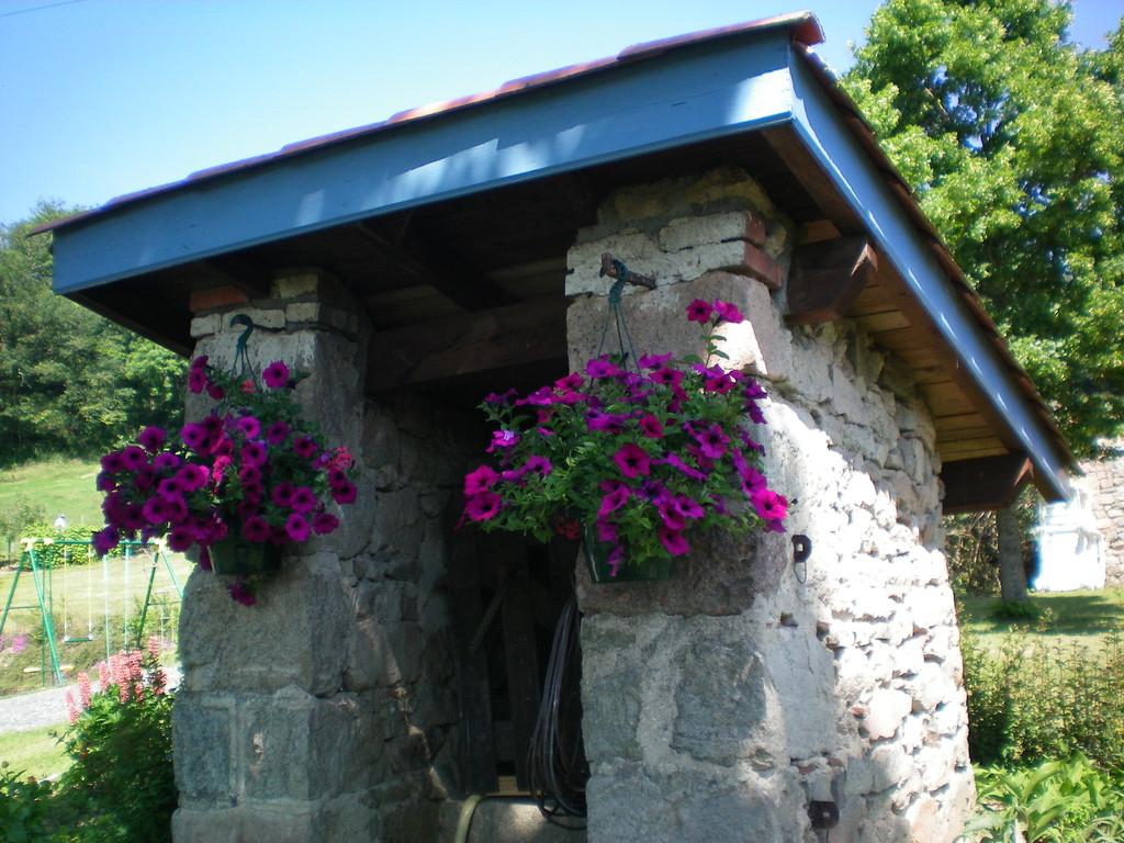 fleurs du puits