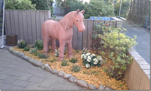 Pony von Susanne Ress