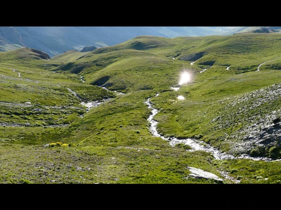 Landes des plateaux du Queyras