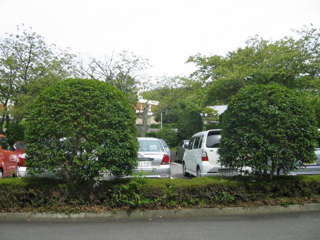図書館の駐車場です。