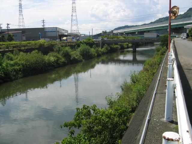 塩田川が合流する巴川です。大きな魚がうようよいます。上の高架が静清バイパスになります。