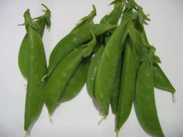 上の肥料がサヤエンドウに変化します。