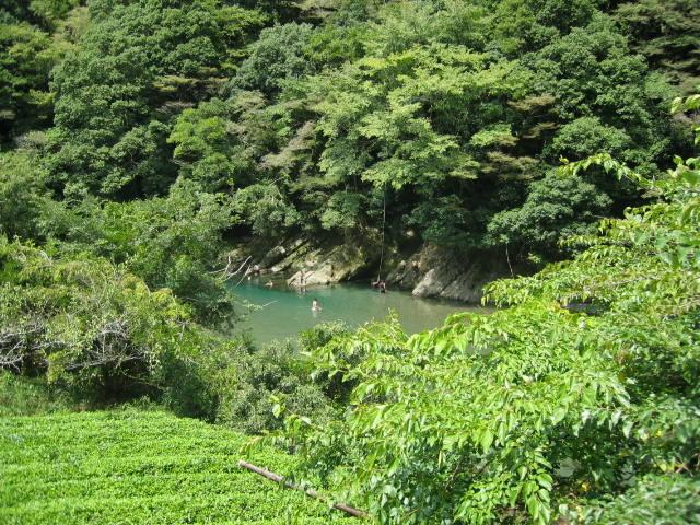 夏休みの興津川上流、ゆるい流れの所で水遊び・・・
