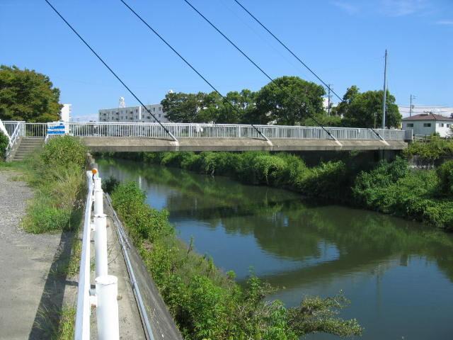 このすぐ左下に塩田川が合流しています。この巴川にはウナギもたくさんいます。