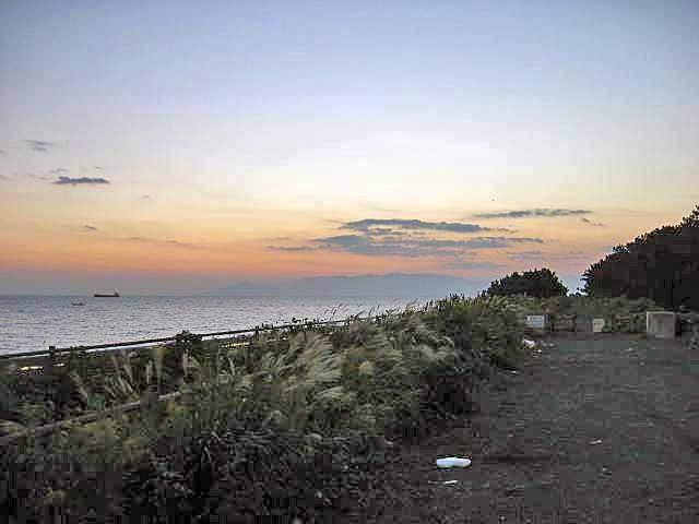 朝焼けの三保海岸です。釣れるのはこの時間帯です。