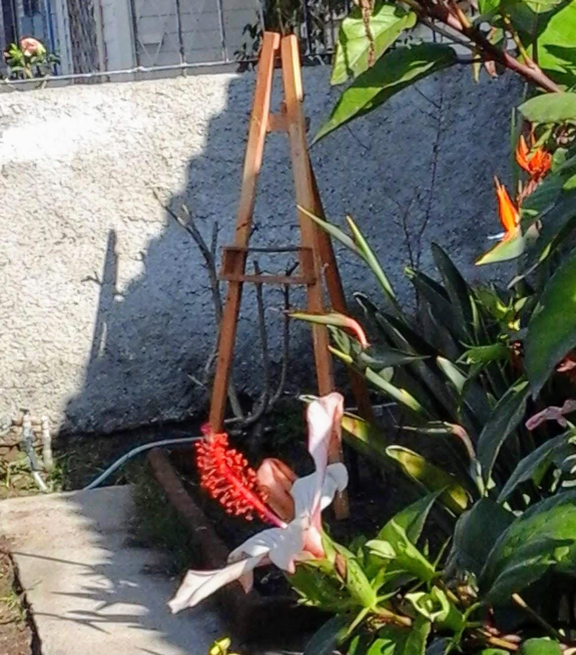 Semanalmente una pintura nueva en mi jardín!