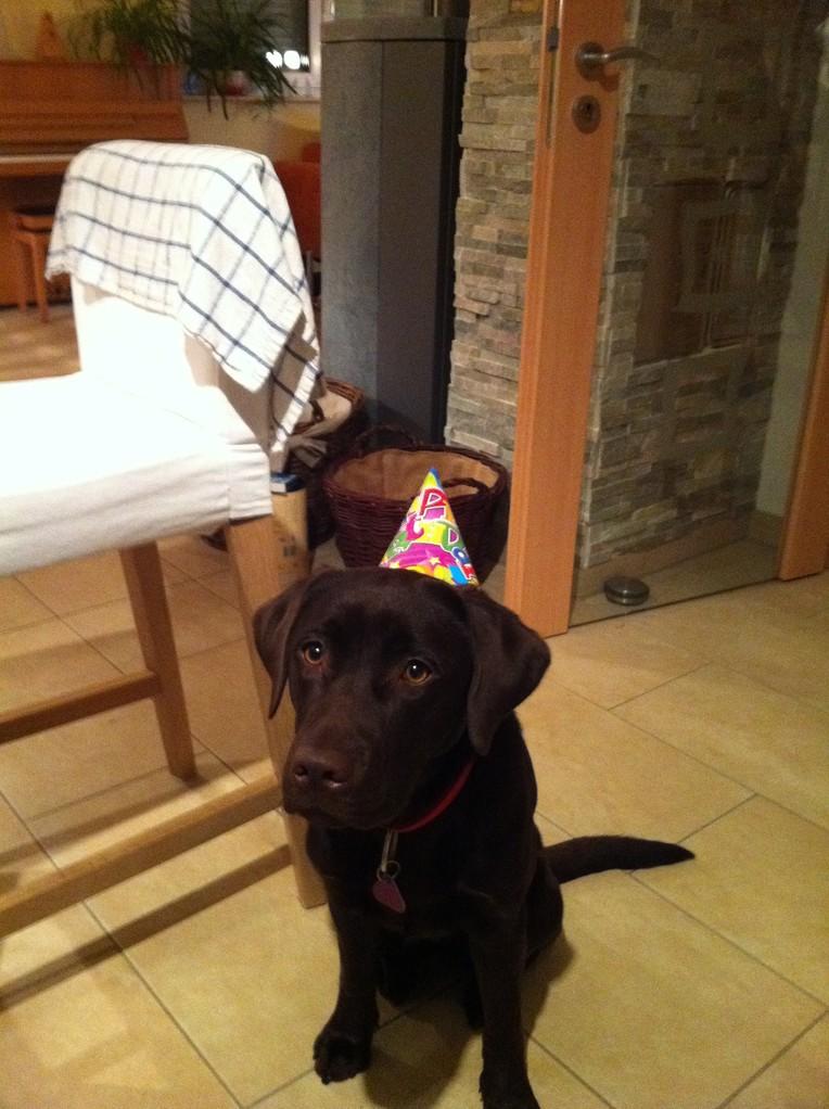 Geburtstagsparty