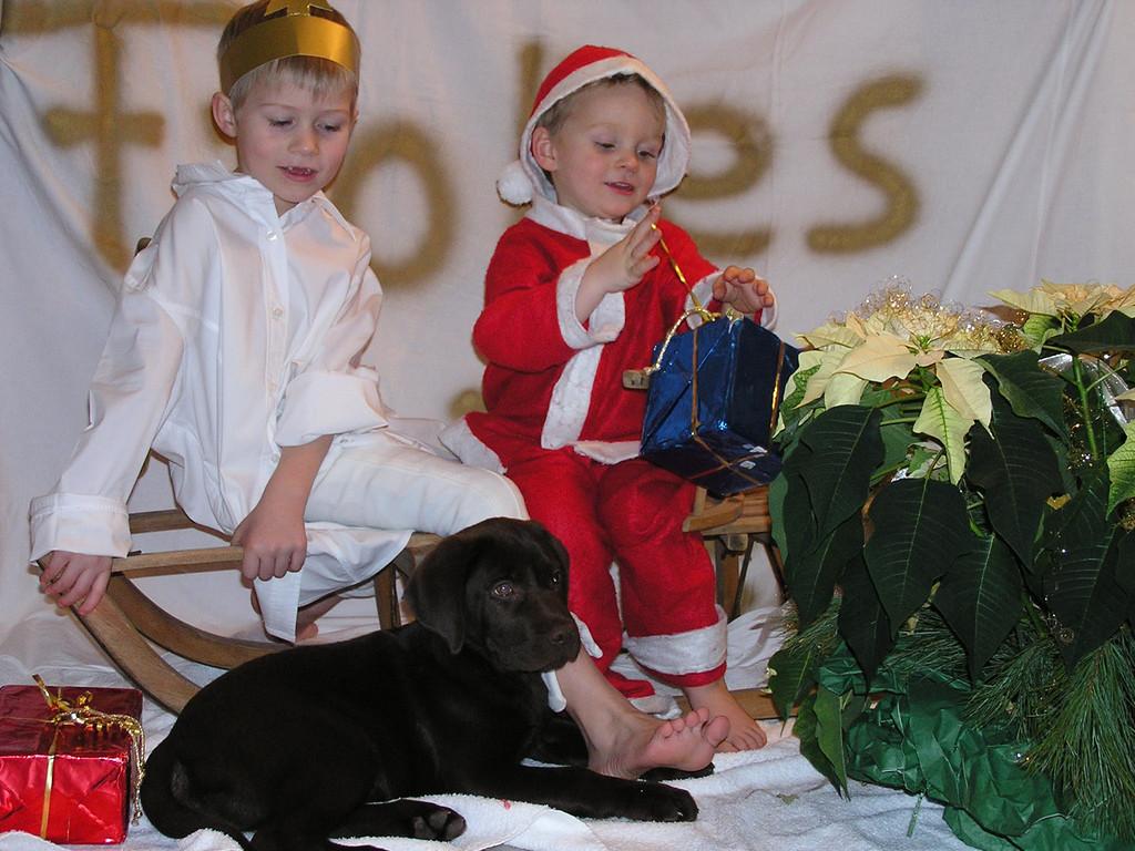 Das erste Weihnachten mit Tami
