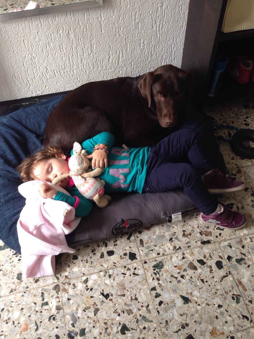 Oktober 2014: Mia und Balu halten Mittagsschlaf :-)